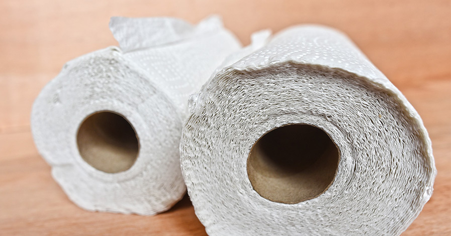 Two paper towel rolls