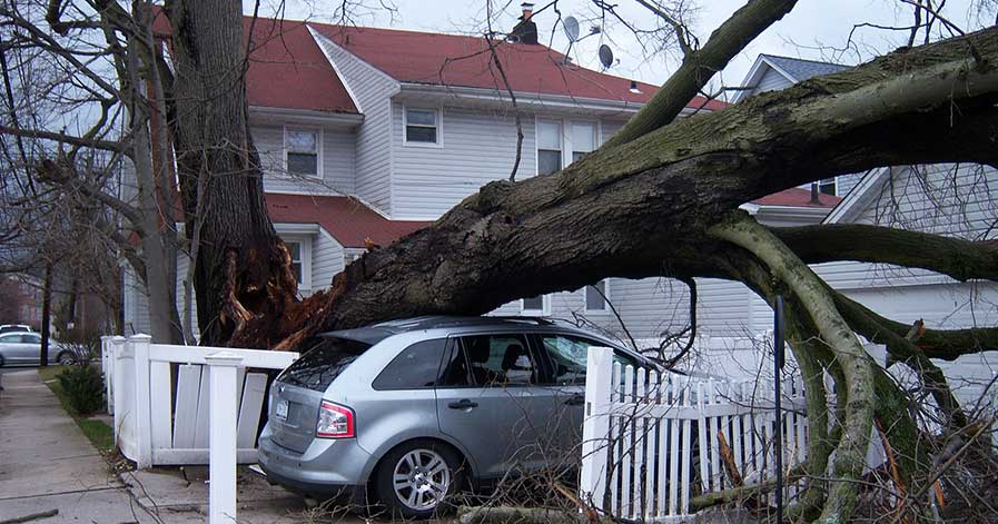Tree fallen on car in front of house